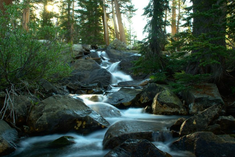 yosemite forest wilderness cascade