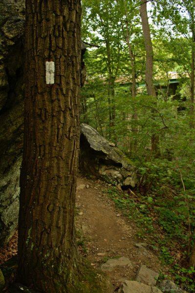appalachian trail maryland virginia