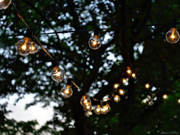 wedding light bulb orb