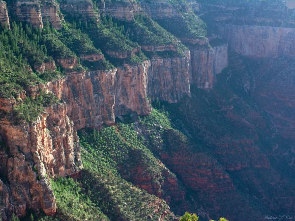 grand canyon red cliff walls