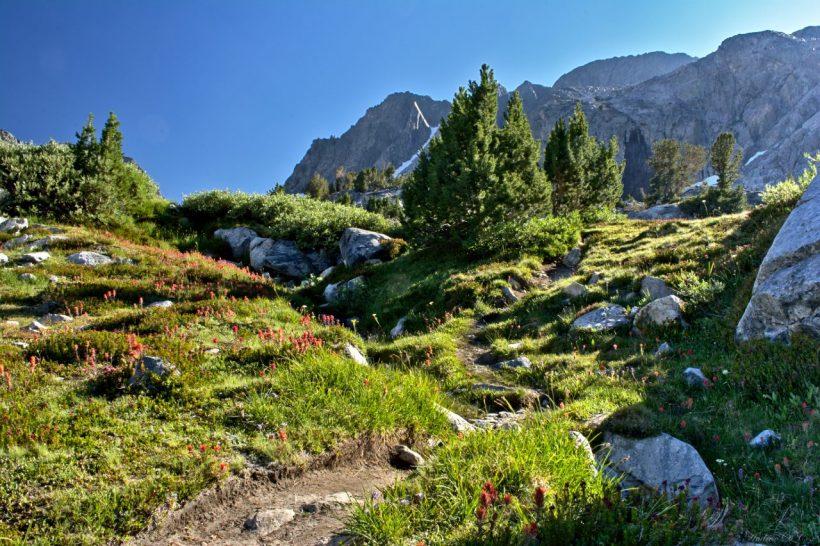 sierra nevada mountains ansel adams wilderness trail