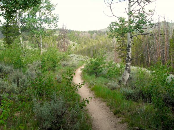 williams creek trail idaho