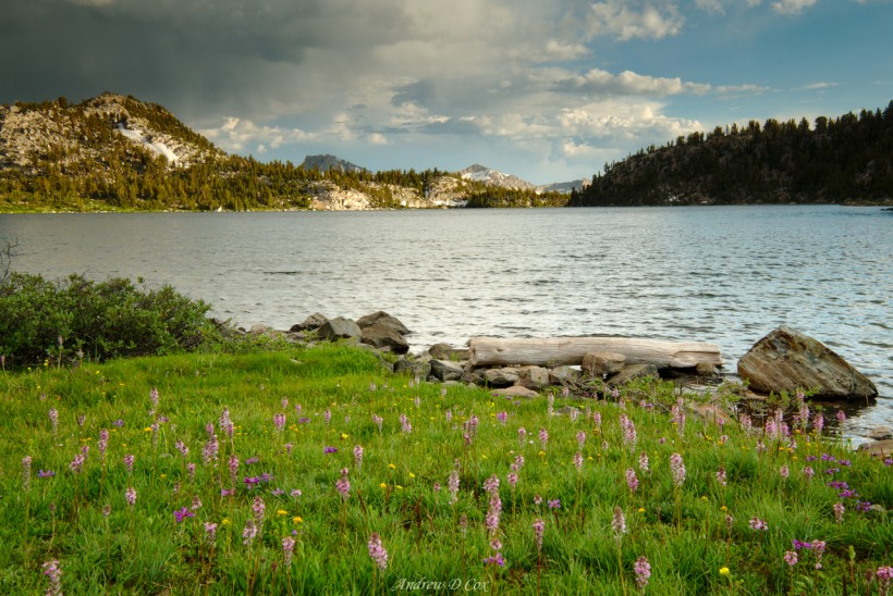 lake virginia john muir trail