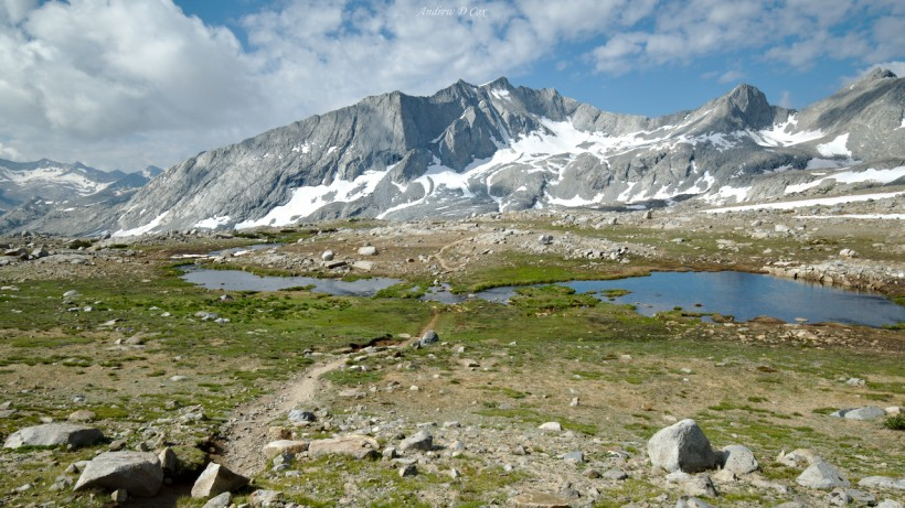 john muir trial alpine zone