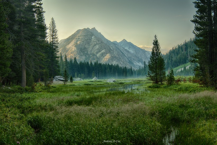 john muir trail grouse meadow