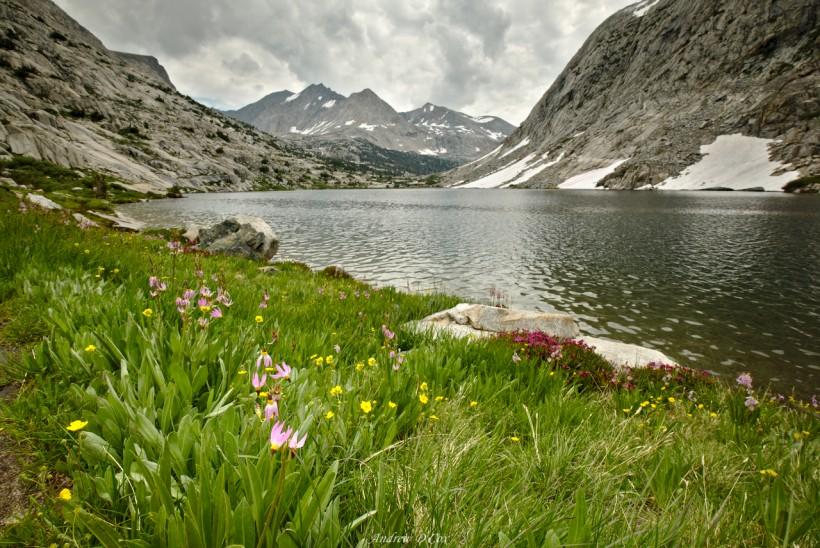 lower palisade lake john muir trail