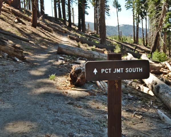 john muir trail sign