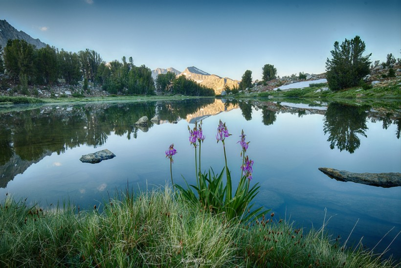 john muir trail wildlife lake