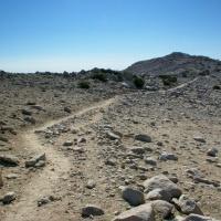 San Gorgonio Summit trail