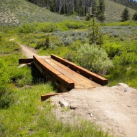 williams creek bridge meadow