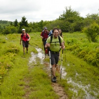 dolly sods wilderness backpacking
