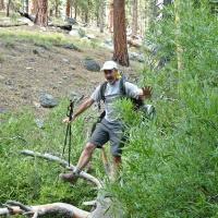 balance log creek crossing