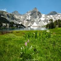 john muir trail rae lakes loop