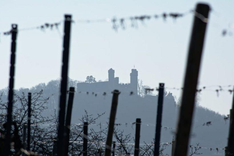 castle germany auerbach schloß vineyard