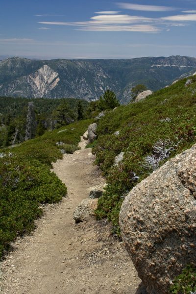 Trail San Gorgonio Wilderness San Bernardino Peak