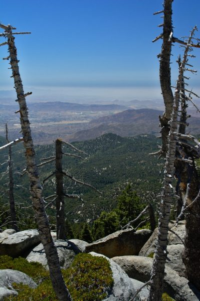 san jacinto mountain view landscape