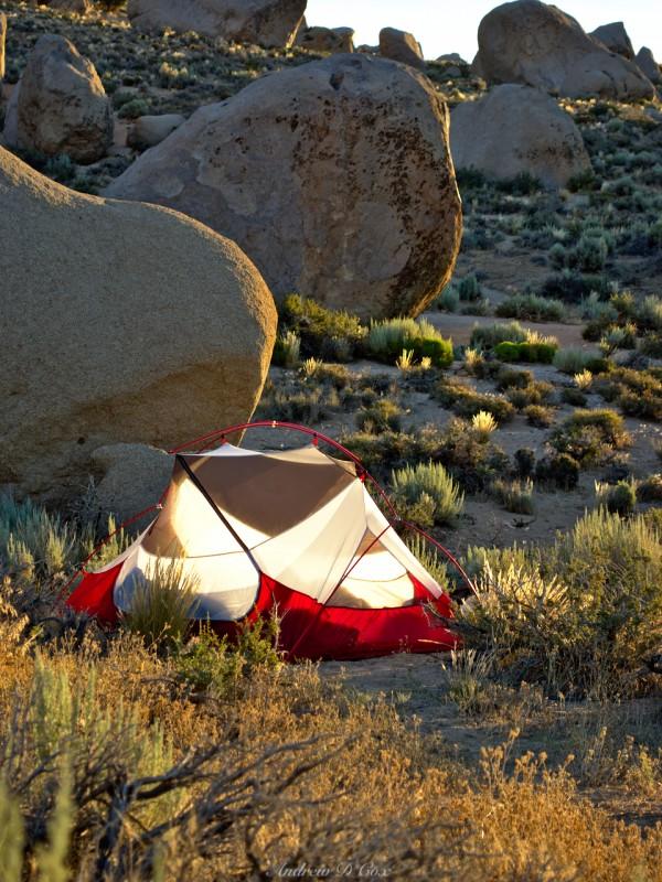 tent buttermilks camping