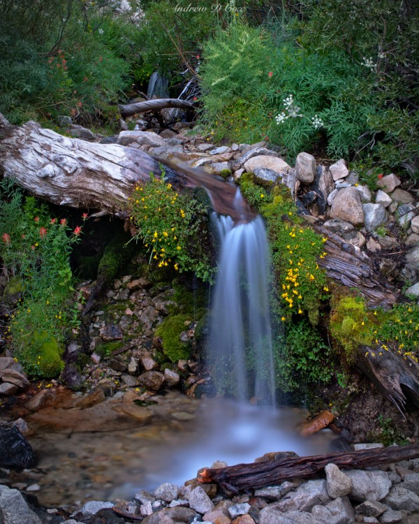 mt san gorgonio waterfall