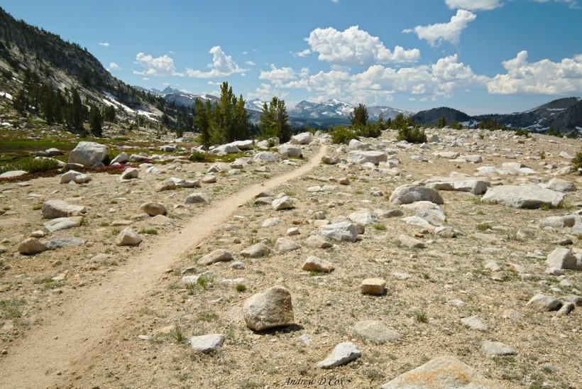 alpine trail john muir trail