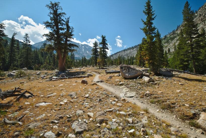 john muir trail desert landscape
