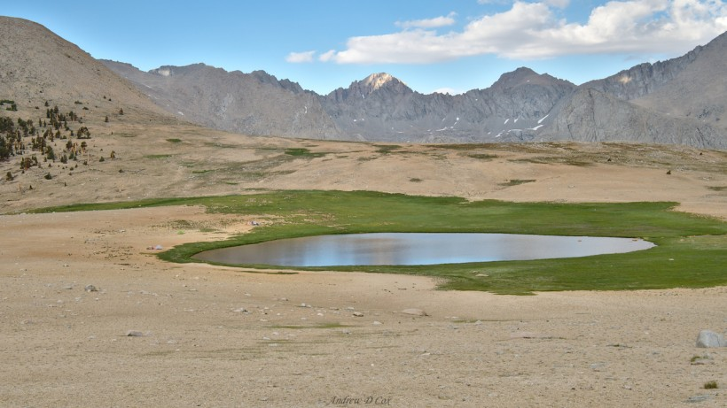 john muir trail bighorn plateau
