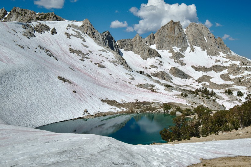 alpine lake john muir trail