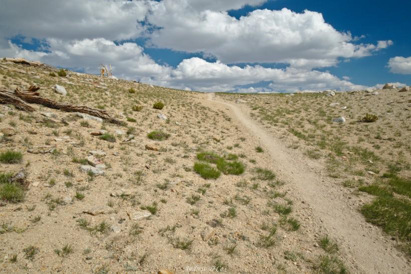 john muir trail alpine