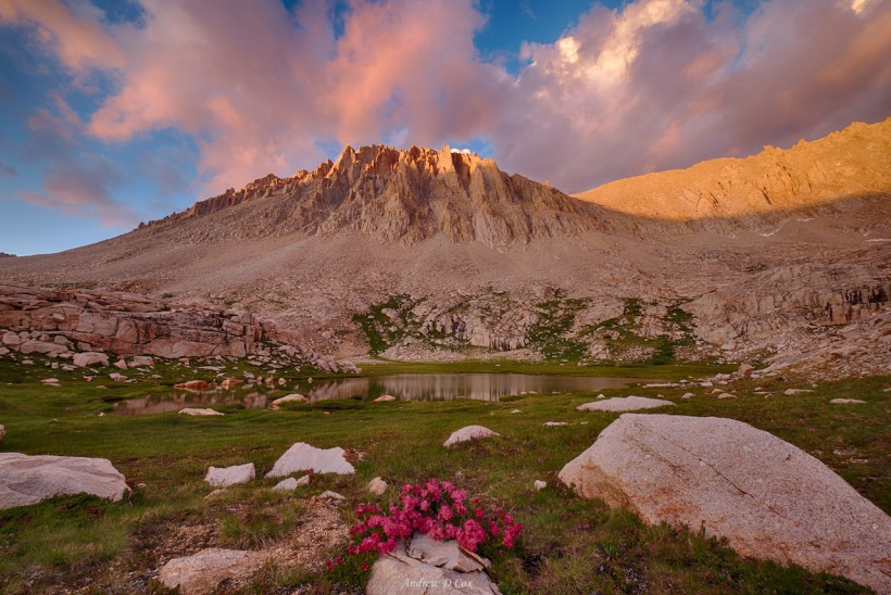 john muir trail sunset pink mount whitney