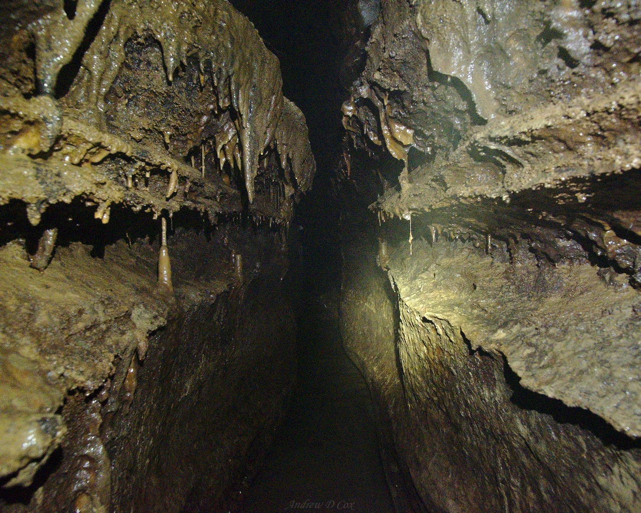 Sullivan Cave Indiana Map.Spelunking In Doghill Donnehue Cave Backcountry Sights