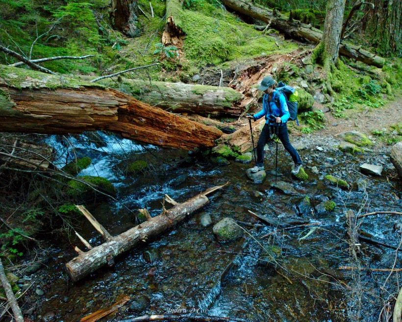 mark o hatfield wilderness backpacking stream