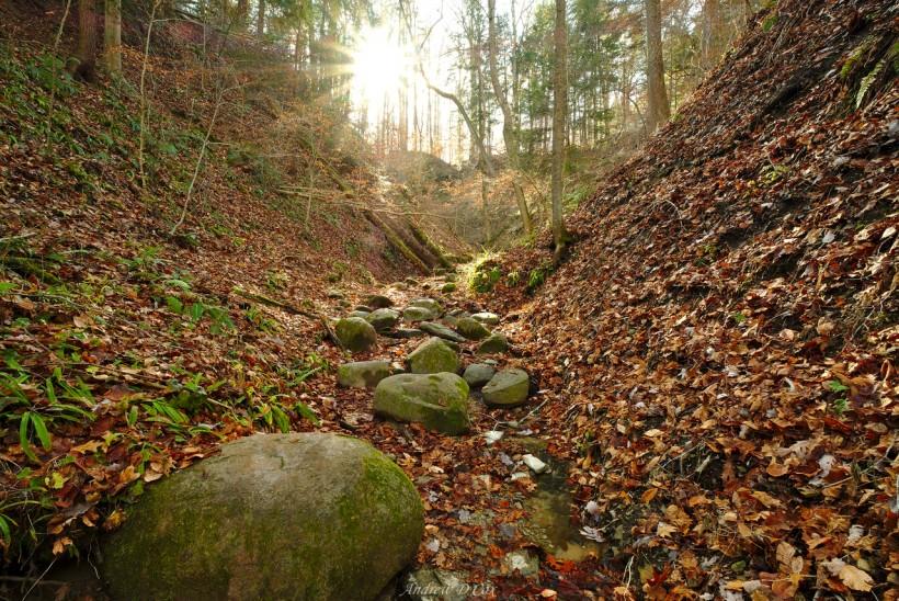 kintz ravine shades state park