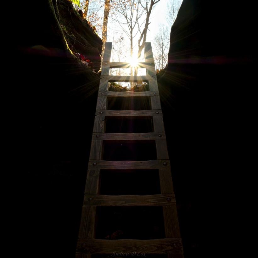 ladder shades state park