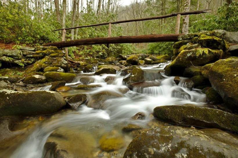 smoky mountains bridge creek