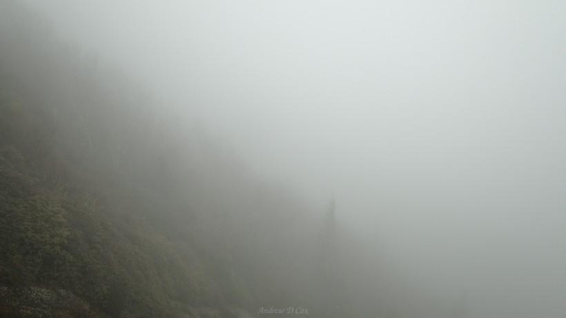 smoky mountains fog