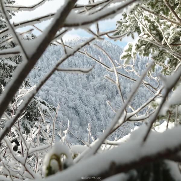 smoky mountains winter landscape