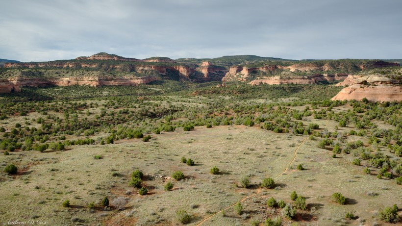 mcinnis canyons landscape