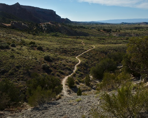 colorado national monument wedding canyon trail