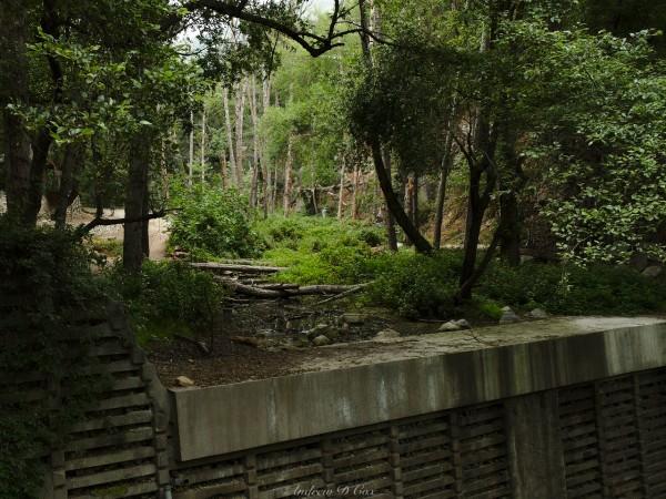 santa anita canyon dams erosion