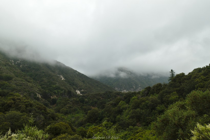 mount wilson clouds