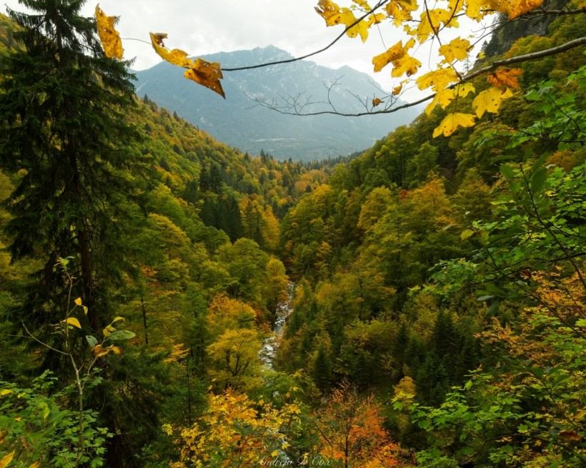 alps river valley autumn foliage