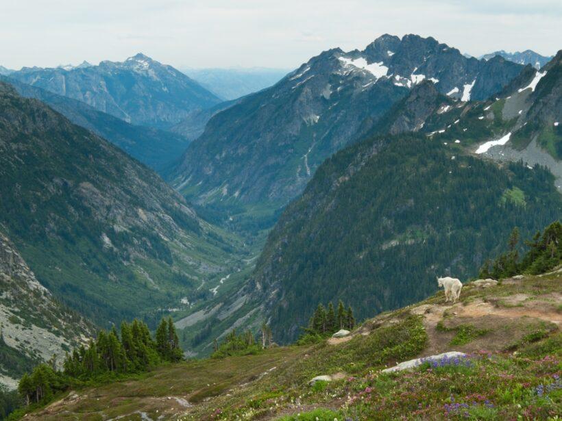 cascade pass sahale glacier