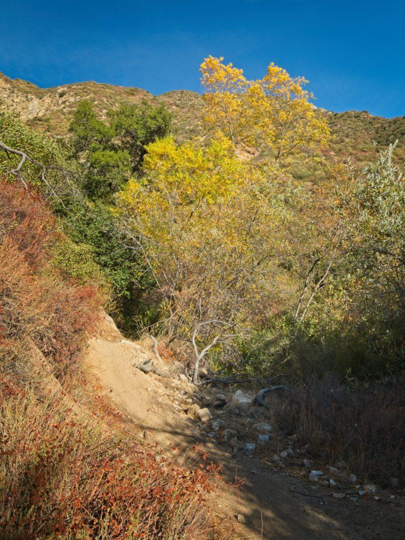 brown mountain hiking