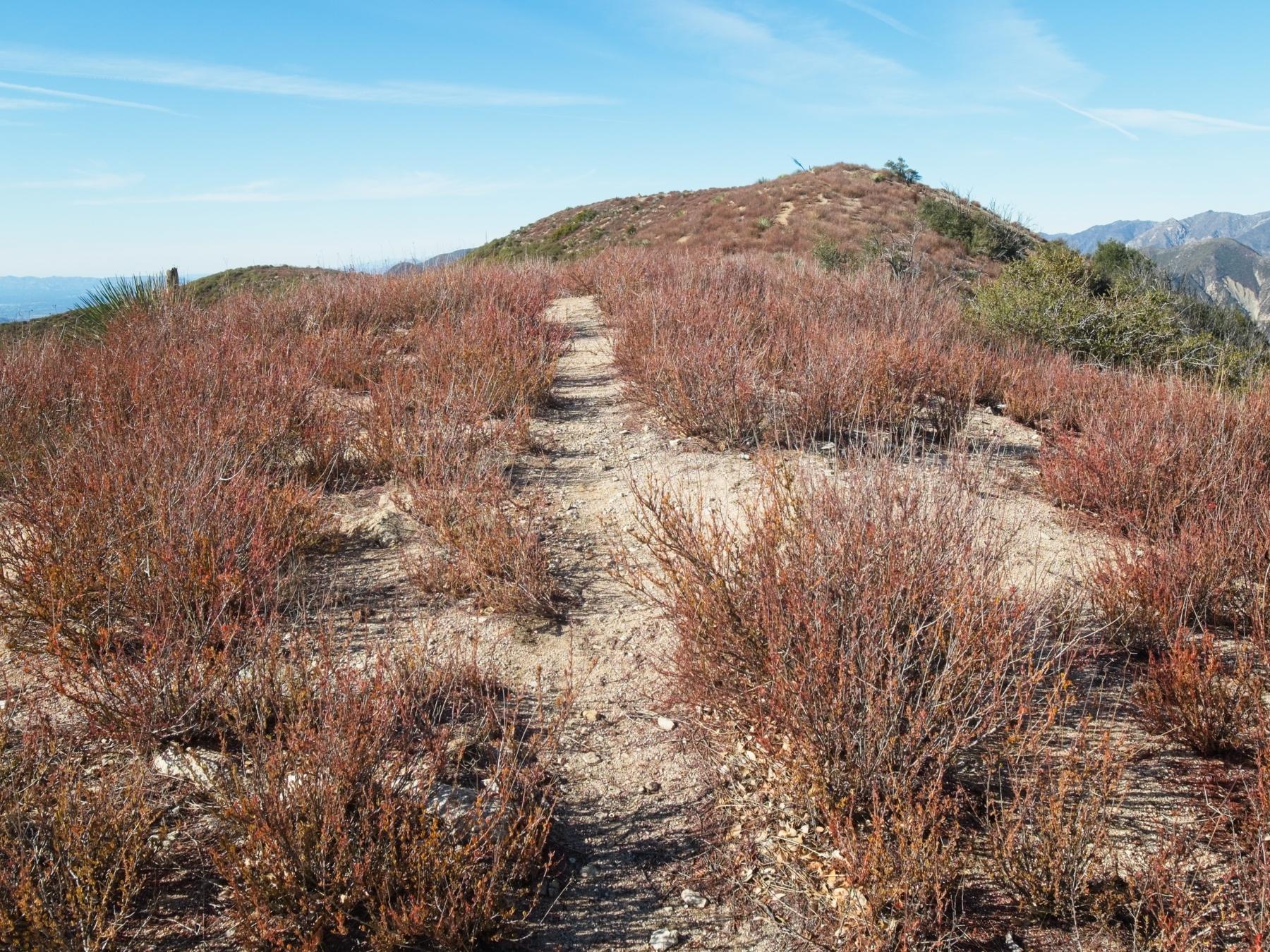 brown mountain ridge