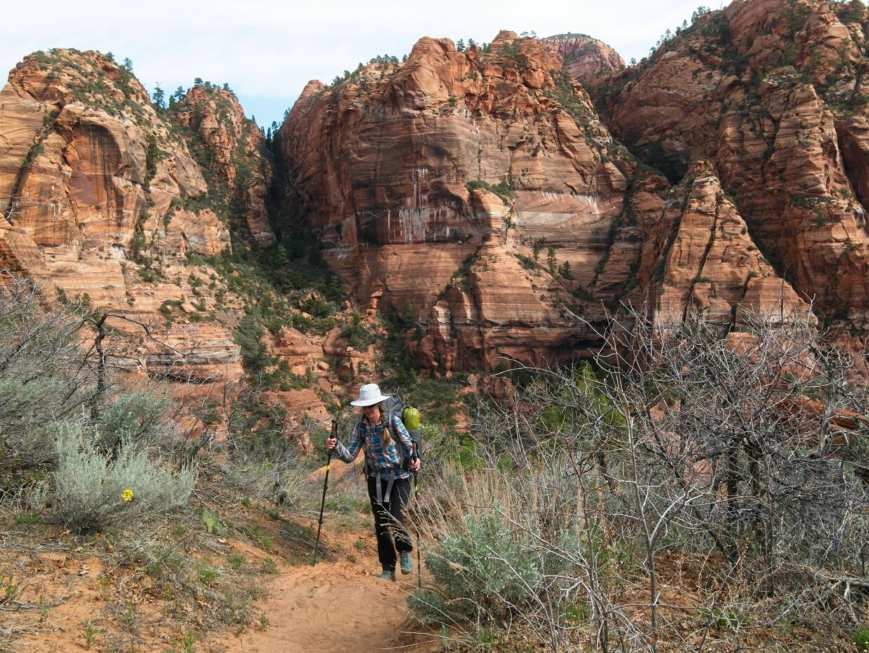 zion national park hop canyon trail