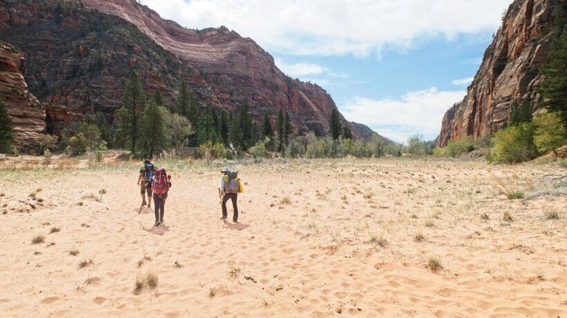 zion national park hop canyon