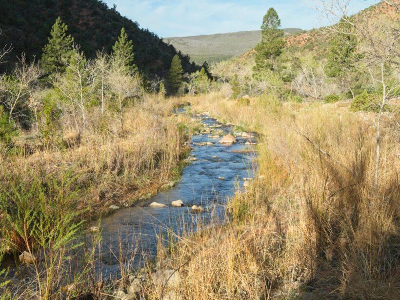 zion national park la verkin creek