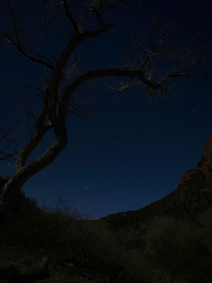 zion national park stars