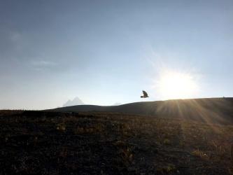 teton mountains hurricane pass raven