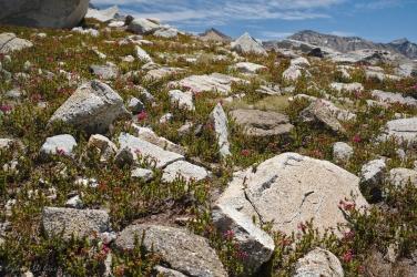 sierra high route boulders