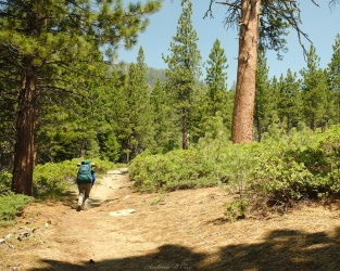 sierra high route copper creek trail